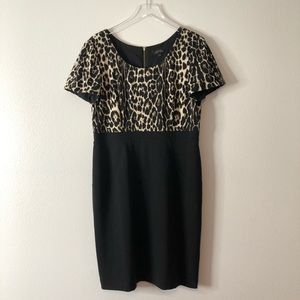 Tahari Leopard Print Black Sheath Dress
